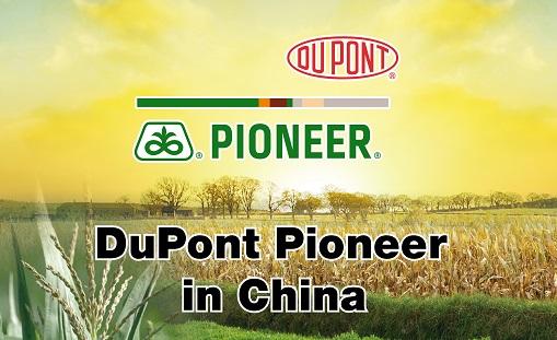 Pioneer Logo 2015
