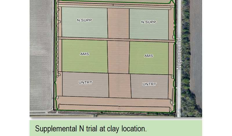 Supplemental N trial at clay location