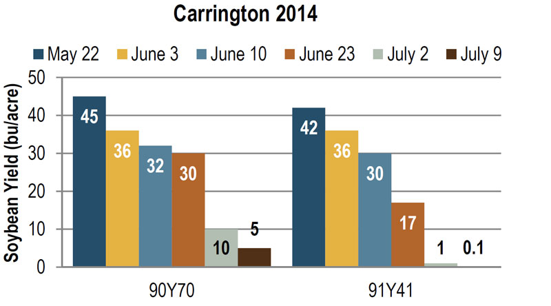 Soybean yield at Carrington in 2014, as influenced by planting date and variety.