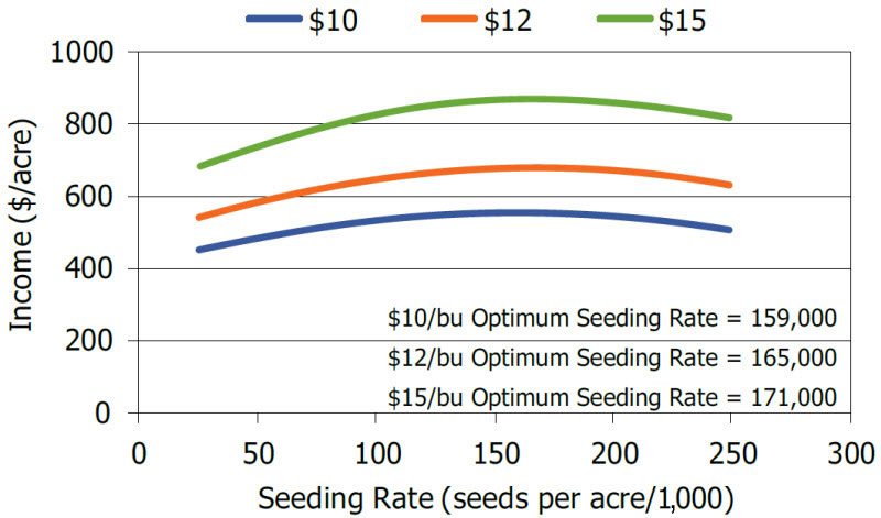 Chart showing optimum economic seeding rates at various soybean market prices.