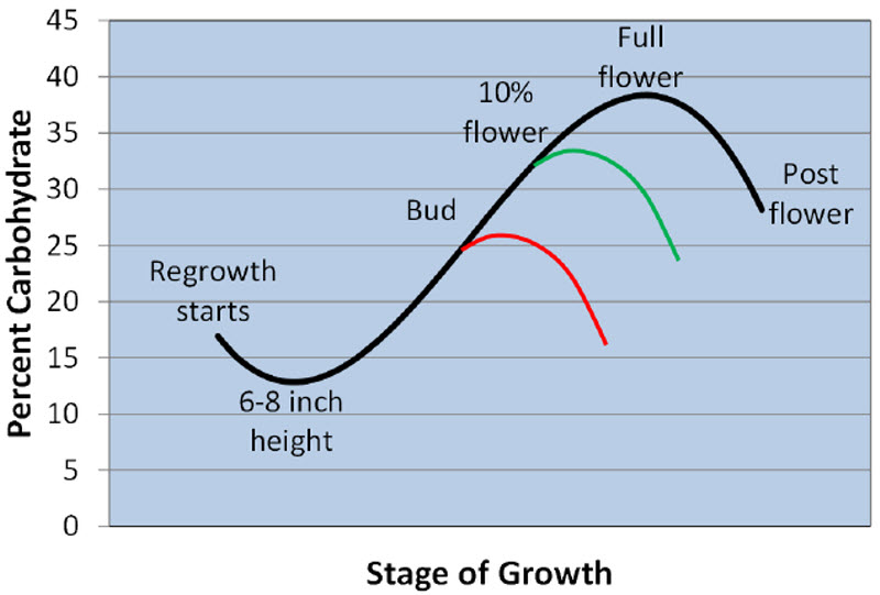 stage of growth chart