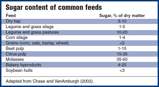 Sugar content of common feeds