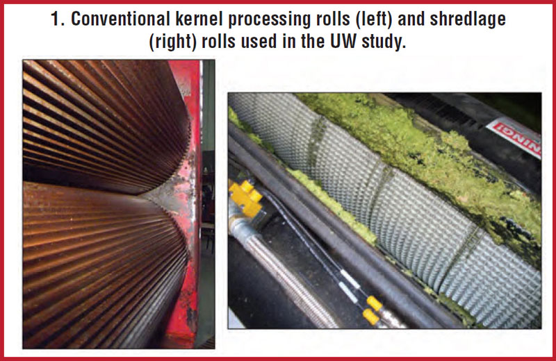 Conventional kernel processing rolls and shredladge rolls used in University of Wisconsin study.
