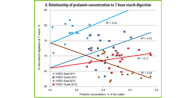 Figure 4. Relationship of prolamin concentration to 7-hour starch digestion.