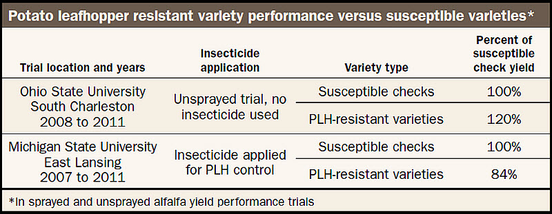 Potato leafhopper resistant variety performance versus susceptible varieties