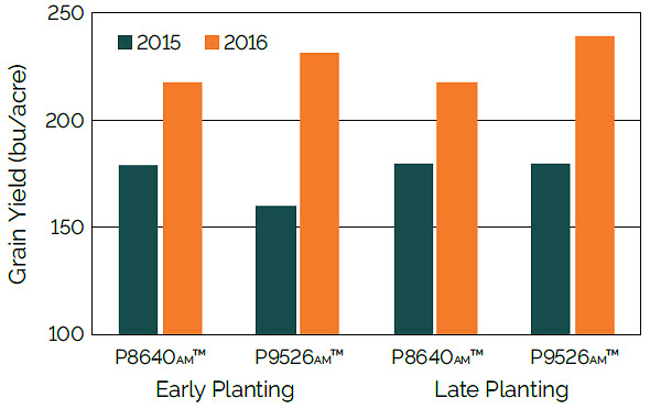 Chart showing the effect of planting date and hybrid on yield, averaged across management treatments, 2015 and 2016.
