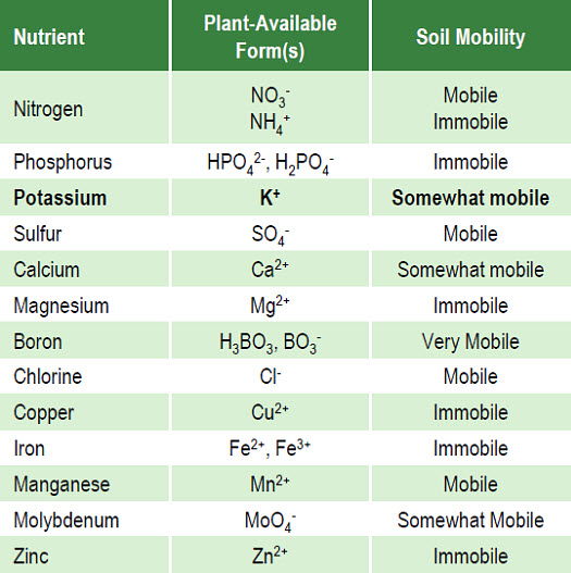 Essential nutrients for plant growth,forms available for plant uptake, and relative mobility in soil water.