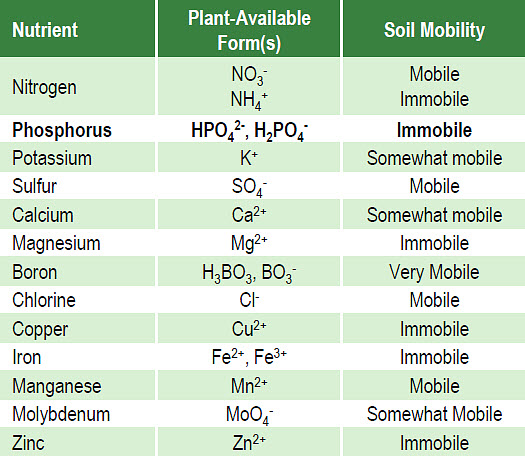 Essential nutrients for plant growth, forms available for plant uptake, and relative mobility in soil water.