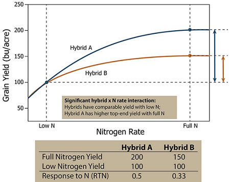 Response of two hypothetical corn hybrids which both hybrids have similar yields under low N, but Hybrid A has greater yield potential with adequate N.