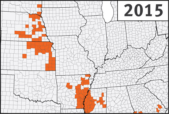 This is a map of the U.S. Corn Belt showing confirmed detections of southern rust in corn through the first week of September during the 2015 growing season.