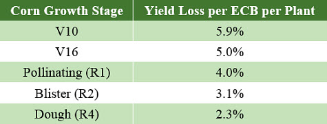 Yield losses caused by European corn borer damage at various corn growth stages (Boyd and Bailey, 2001).