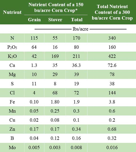 Table estimating amounts of selected nutrients in corn at maturity to support a 300 bu/acre grain yield for hybrids produced before 1968 based on the 1968 nutrient concentrations for 150 bu/acre corn.