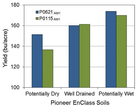 Yield of 2 hybrids by soil classification  (by Pioneer Enclass® Soils).