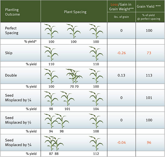 Corn grain yields resulting from various planting outcomes.