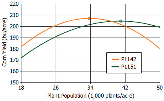Corn yield response to plant population of 2 hybrid families with similar comparative relative maturity.