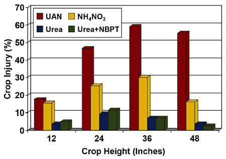 Leaf injury caused by broadcast application of nitrogen sources to corn at different plant heights.