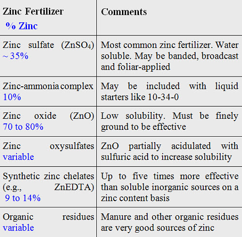 Zinc Deficiencies And Fertilization In Corn Production