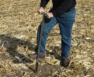 土壤溶液采样器应用现场