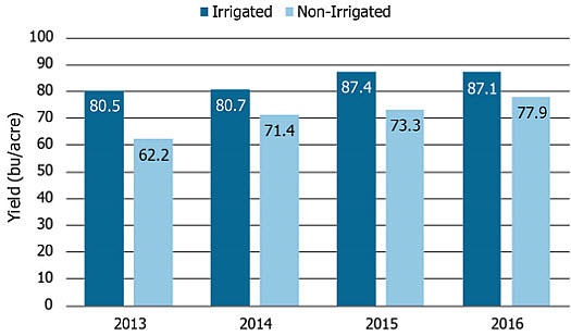 Average yield of irrigated and non-irrigated high yield soybean entries, 2013-2016.