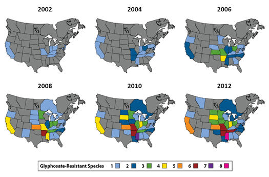 Confirmed Glyphosate Resistant Weed Populations In North America 2002 2012