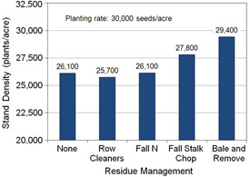Chart: Effects of residue management treatments on stand density for no-till continuous corn.