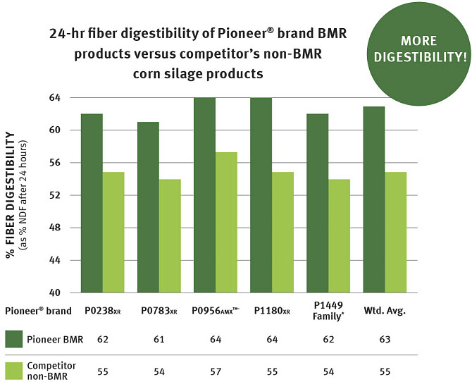 24-hour fiber digestibilty of Pioneer® brand BMR products versus competitor's non-BMR corn silage products.