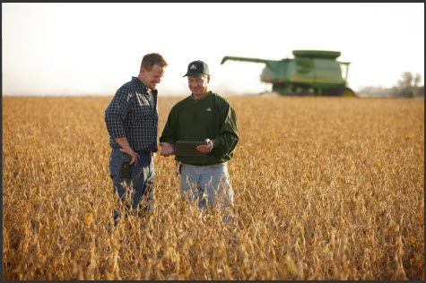 Pioneer® brand soybeans feature top-end yield potential and defensive traits