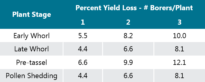 This is a table showing yield losses caused by ECB for various corn stages.