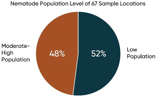 Chart showing proportion of locations sampled in 2018 with low nematode populations and moderate to high populations.