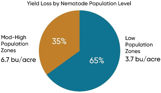 Chart showing corn yield loss in evaluation zones with moderate to high nematode population levels and low population levels.