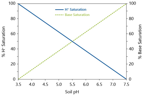Graph - Base saturation and the CEC across soil pH.