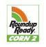 Roundup Ready Corn 2